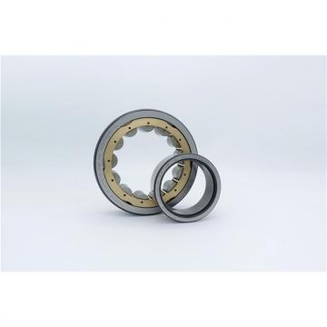 Toyana CX238 Wheel bearings